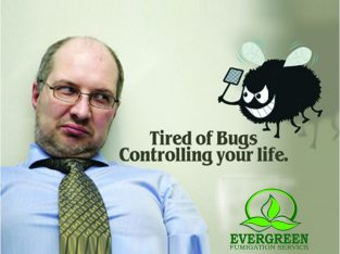 Evergreen Fumigation Service