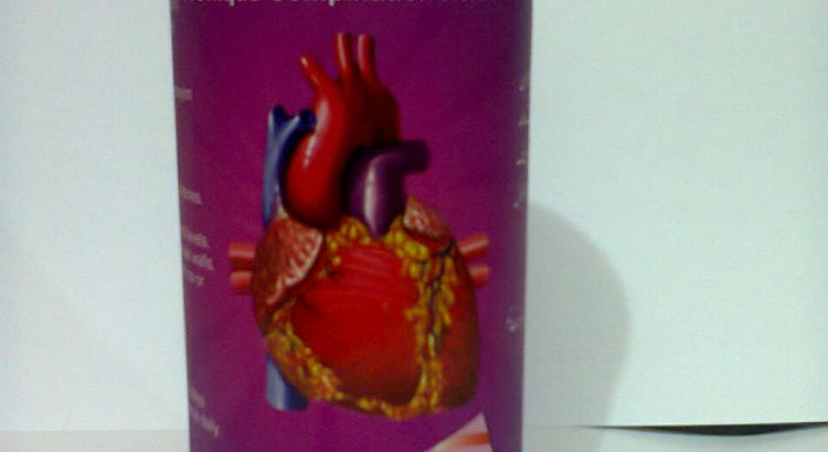 Herbal Treatment for Heart Diseases